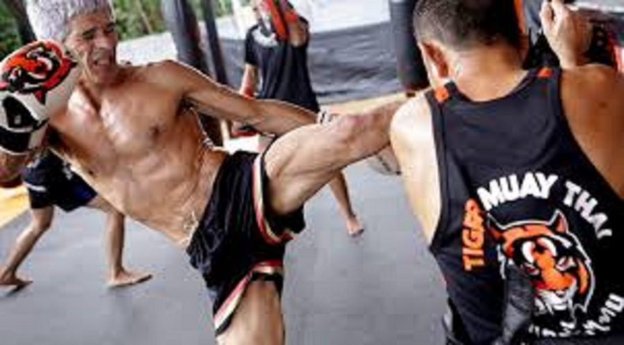 Way To Use For Developing Your Muay Thai and Weight Loss Business In Thailand