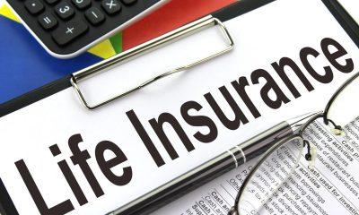 Top 5 Term Insurance Plans