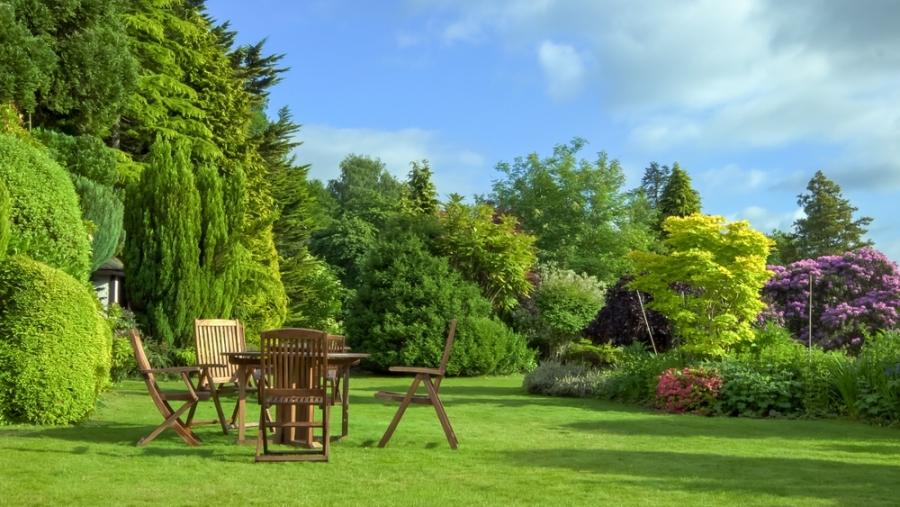 Garden Trends To Try In Summer 2020